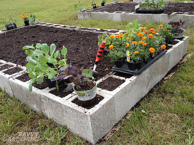 How to Create an Easy, Fast and Economical Raised Garden ...